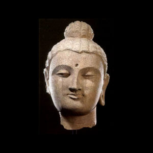 Gandhara Stucco Head of the Buddha