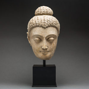 Gandhara Stucco Head of a Buddha