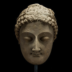 Gandharan Stucco Head of Buddha